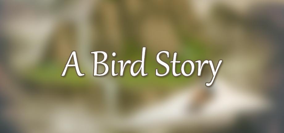 A Bird Story 03 HD blurred