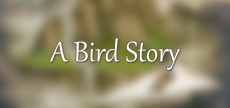A Bird Story 03 HD blurred