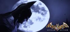 Batman Arkham Asylum 06