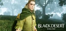 Black Desert Online 40