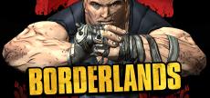 Borderlands 1 07 HD Brick