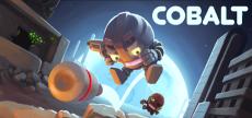 Cobalt 05
