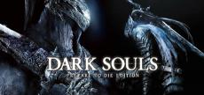 Dark Souls 1 04