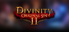Divinity OS 2 29 HD old blurred