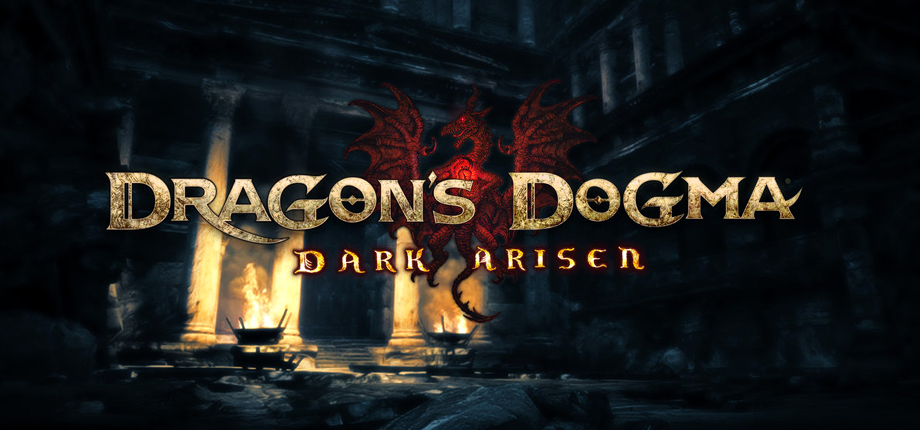 Dragon's Dogma 14 HD