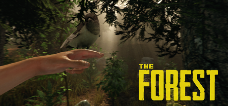 The Forest 04