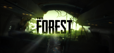 The Forest 13