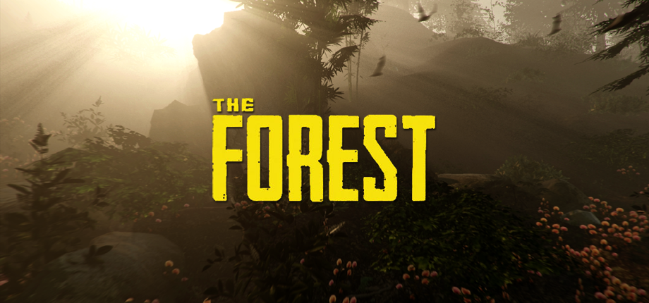 The Forest 16 HD