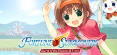 Fortune Summoners 05