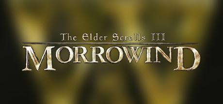 Morrowind 08 blurred