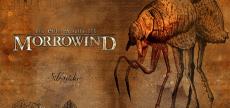 Morrowind 05