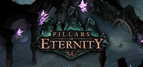 Pillars of Eternity 01