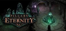 Pillars of Eternity 02