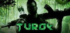 Turok 2008 request 01