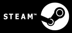 Steam 13