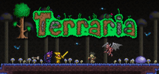 Terraria 04