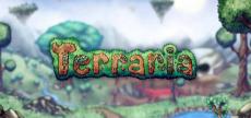 Terraria 06