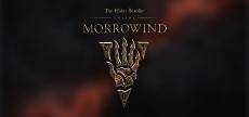 TESO Morrowind 06 HD blurred