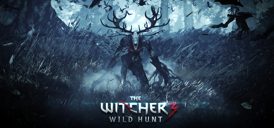 Witcher 3 33 HD