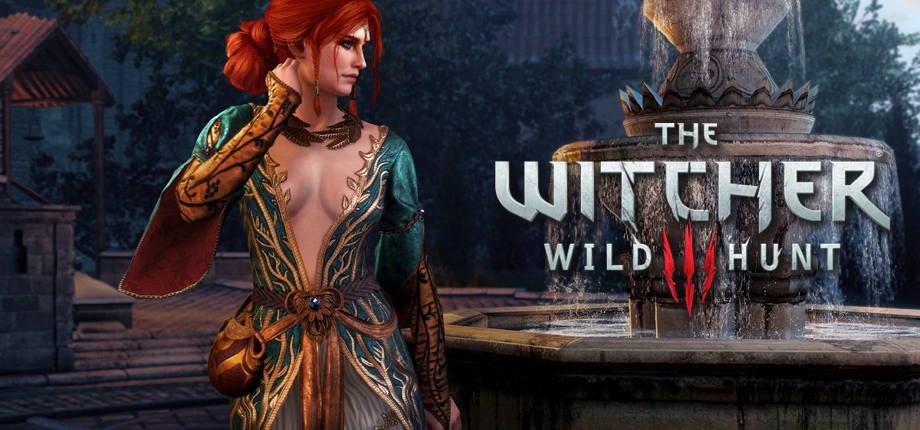 Witcher 3 38 HD