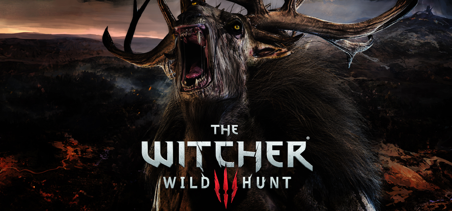 Witcher 3 43 HD