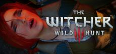Witcher 3 06