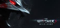 Witcher 3 13