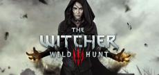 Witcher 3 14