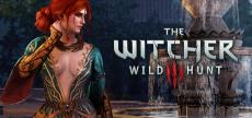 Witcher 3 18
