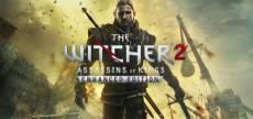 Witcher 2 04