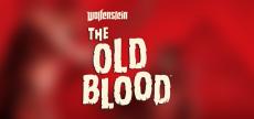 Wolfenstein The Old Blood 03 HD blurred